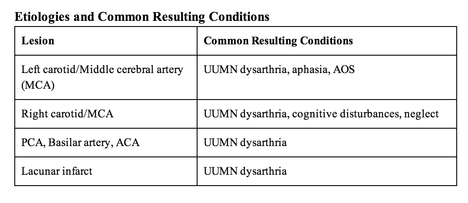 lacunar stroke is the cause of uumn dysarthria in 45 to 53 of patients additional lesion locations and common resulting conditions are listed below